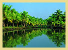Alleppey - The Kerala Backwaters are a chain of large lakes linked by canals lying parallel to the Arabian coast.